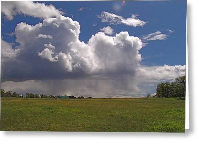Storm Happening Greeting Card by John Norman Stewart