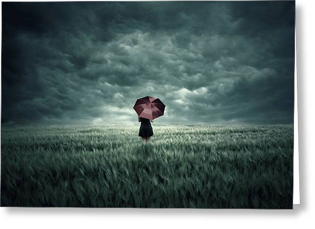 Storm Is Coming Greeting Card by Zoltan Toth