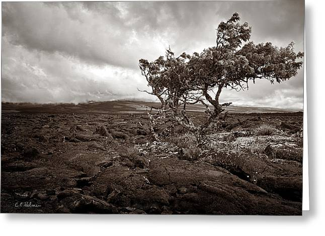 Storm Moving In - Sepia Greeting Card by Christopher Holmes