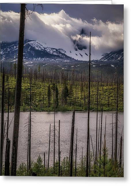 Greeting Card featuring the photograph Storm On Three Fingered Jack by Cat Connor