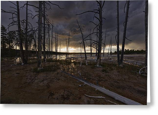 Storm Over Lower Geyser Basin Greeting Card