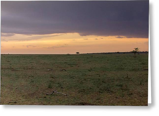Storm Over The Mara 2 Triptych Greeting Card