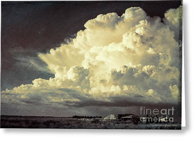 Storm Warning Greeting Card by Marvin Spates