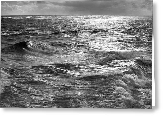 Storm Waters Greeting Card by Sean Davey