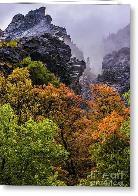 Stormy American Fork Canyon - Wasatch - Utah Greeting Card by Gary Whitton
