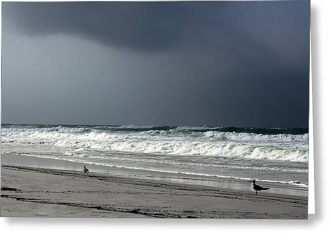 Greeting Card featuring the photograph Stormy by Debra Forand