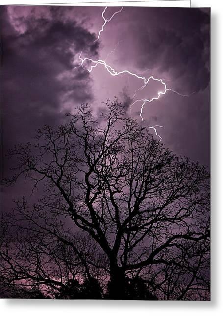 Stormy Night Greeting Card