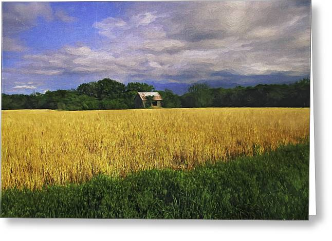 Stormy Old Barn In Wheat Field 2 Greeting Card