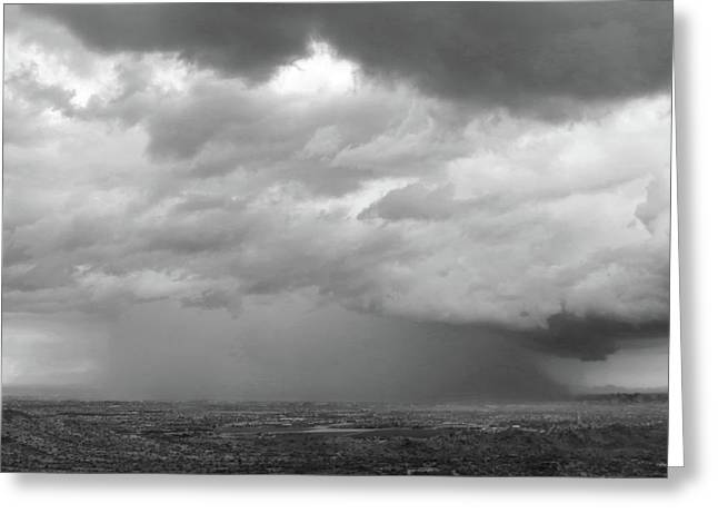 Stormy Phoenix Black And White Greeting Card