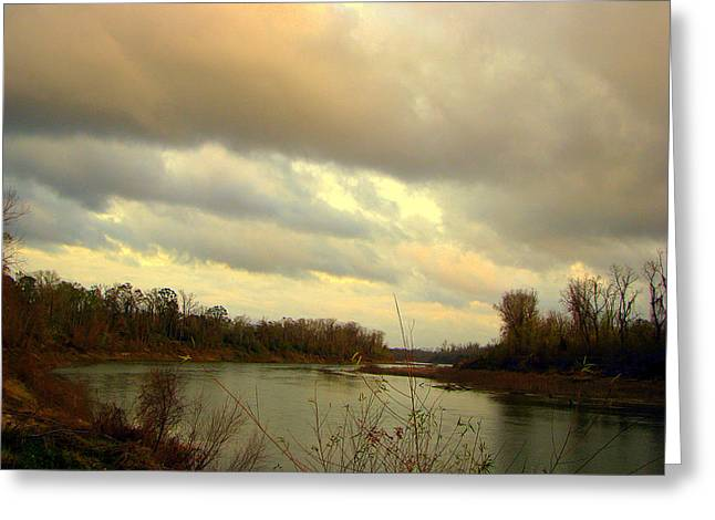 Stormy River Greeting Card by Dottie Dees