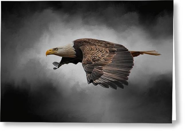 Stormy Sky Flight Greeting Card by Jai Johnson