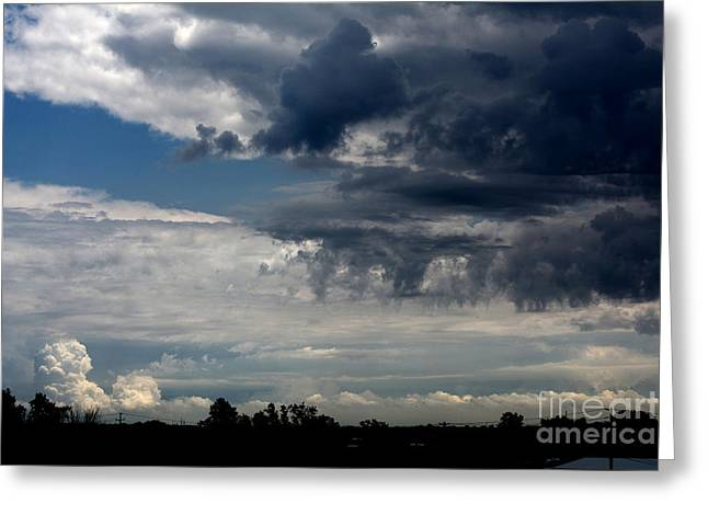Stormy Skyline Greeting Card by Reva Steenbergen
