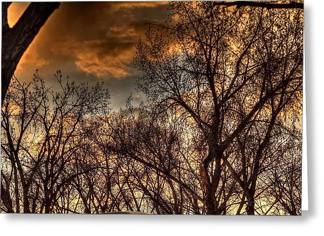 Stormy Sunset 14151 Greeting Card