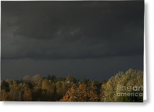 Stormy Weather Greeting Card by Jim Corwin