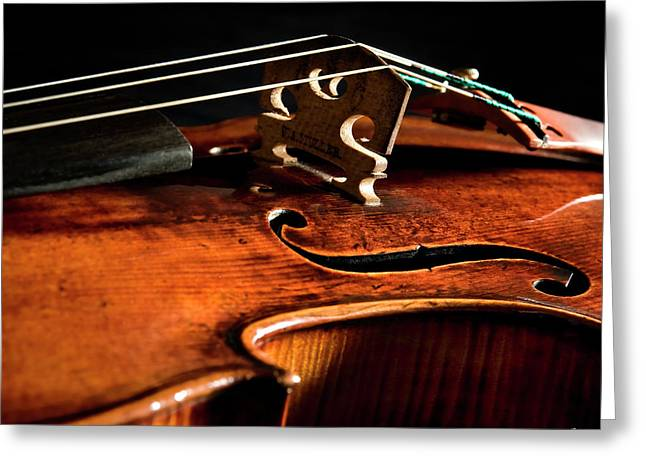Greeting Card featuring the photograph Stradivarius by Endre Balogh