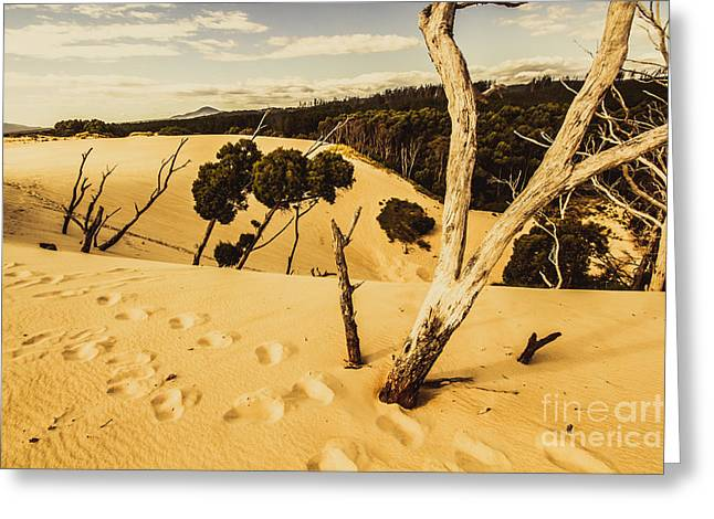 Strahan Sand Dune Landscape Greeting Card by Jorgo Photography - Wall Art Gallery