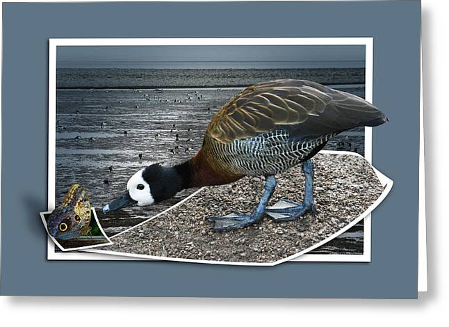 Greeting Card featuring the photograph Strange Encounter by Jane McIlroy
