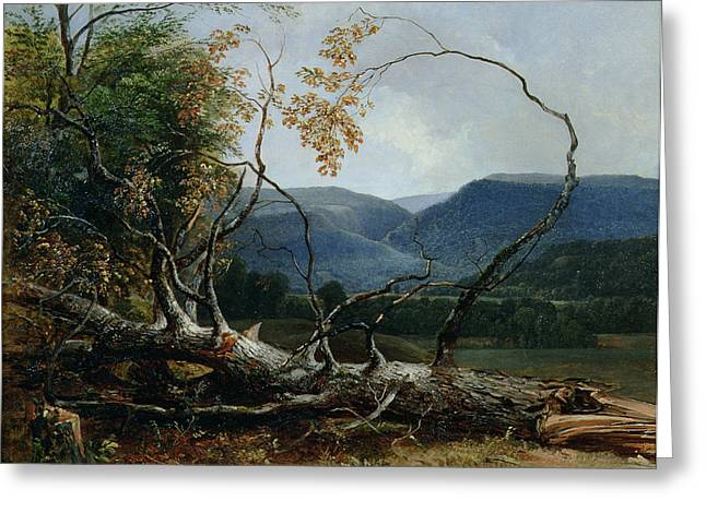 Stratton Notch - Vermont Greeting Card by Asher Brown Durand