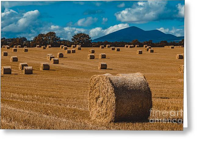 Straw Bale In A Field Greeting Card