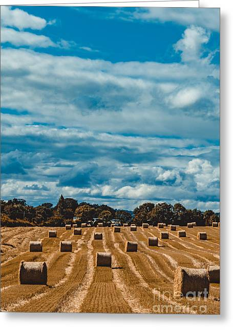 Straw Bales In A Field 2 Greeting Card