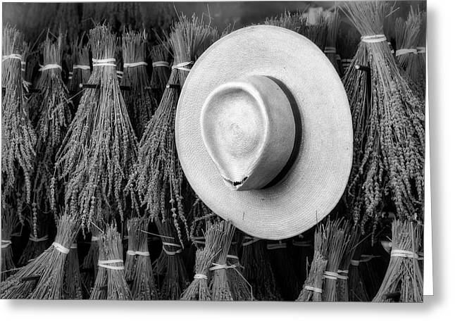 Straw Hat And French Lavender Bunches Bw Greeting Card