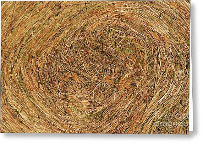 Straw Greeting Card by Michal Boubin