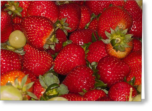 Strawberries 731 Greeting Card