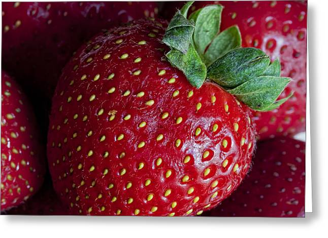 Strawberry 3 Greeting Card