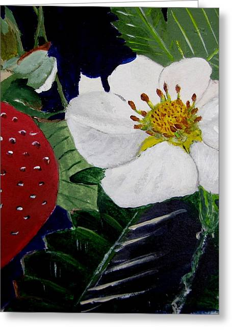 Strawberry And Blossom Greeting Card by Brenda Alcorn