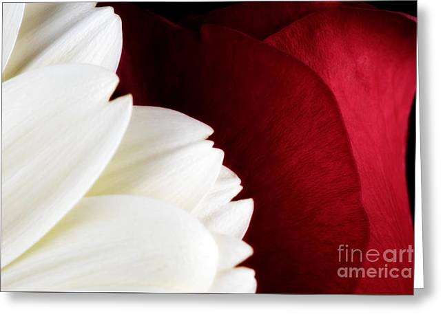 Strawberry And Cream Greeting Card by Mark Johnson