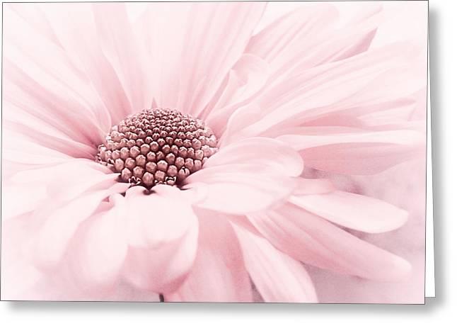 Greeting Card featuring the photograph Strawberry Ice by Darlene Kwiatkowski