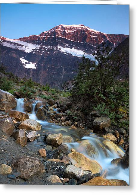 Stream And Mt. Edith Cavell At Sunset Greeting Card