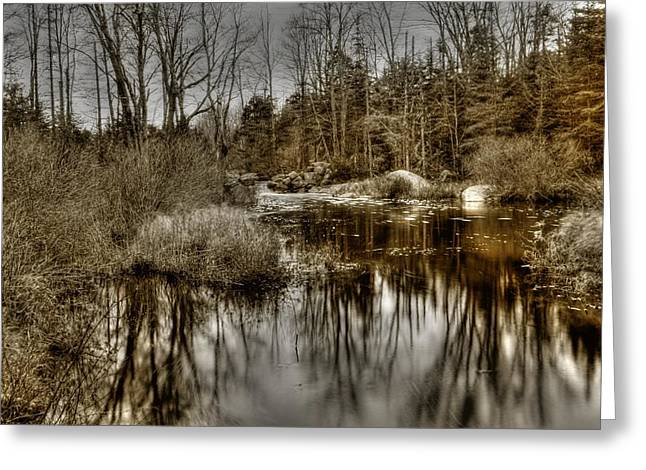 Greeting Card featuring the photograph Stream II by Greg DeBeck