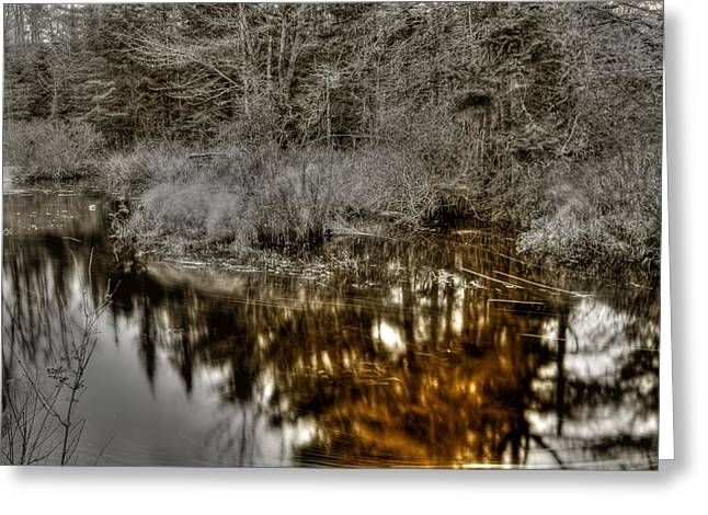 Greeting Card featuring the photograph Stream IIi by Greg DeBeck