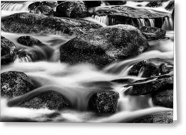 Stream In Black And White Greeting Card