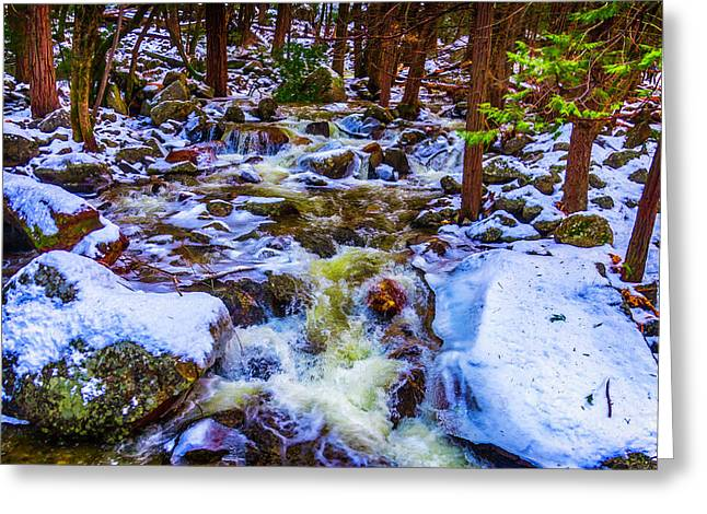 Stream In Snow Covered Woods Greeting Card