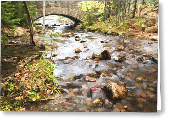 Stream In The Fall Greeting Card by Jon Glaser
