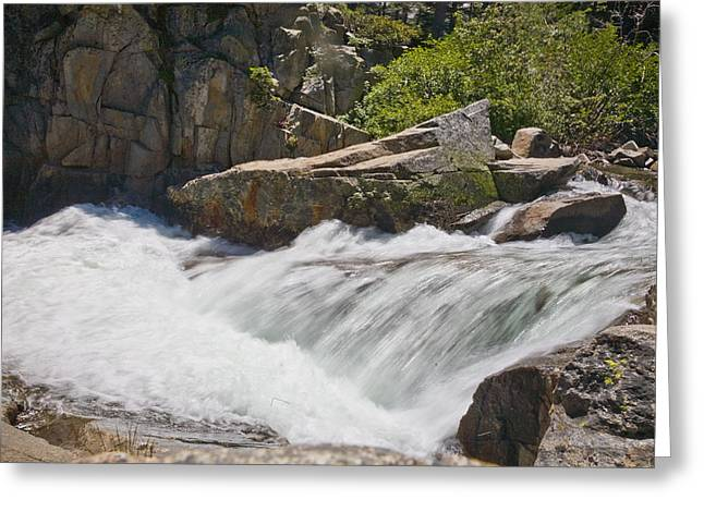 Greeting Card featuring the photograph Stream In Yosemite National Park by Matthew Bamberg