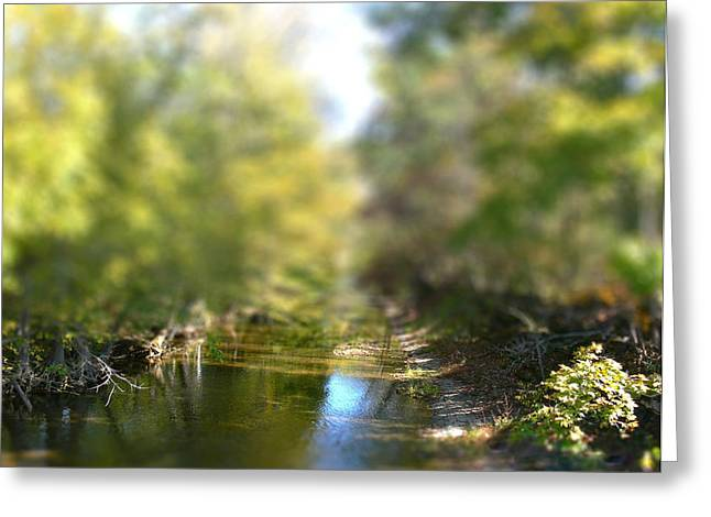 Stream Reflections Greeting Card by EricaMaxine  Price