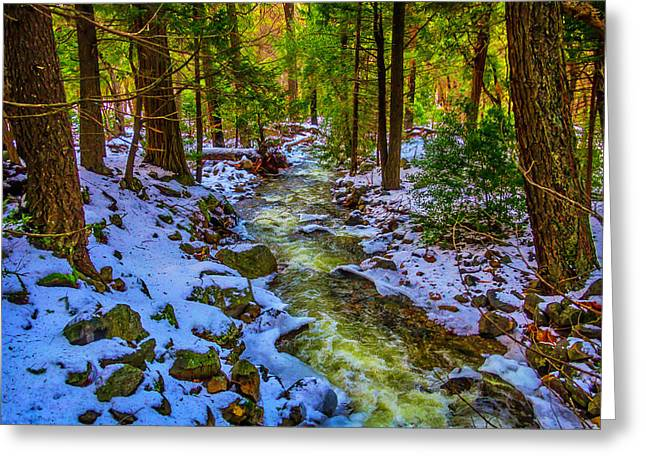 Stream Through Snowy Forest Greeting Card