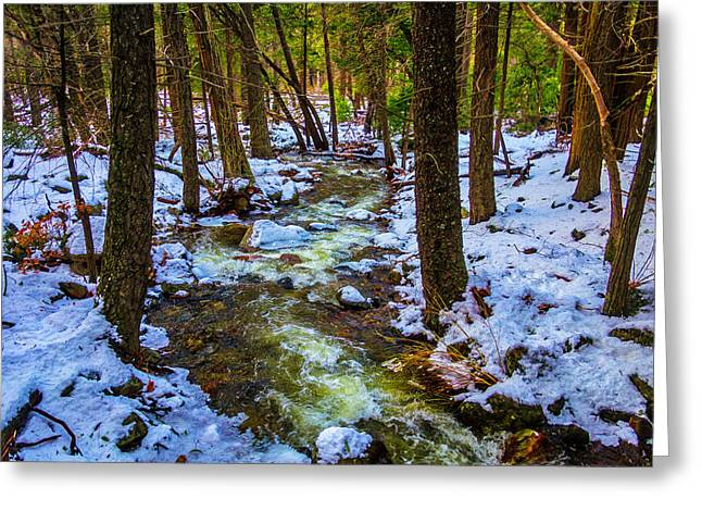 Stream Through Winter Woods Greeting Card