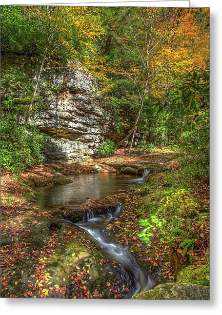Stream To Fallingwater Greeting Card by Tom Weisbrook