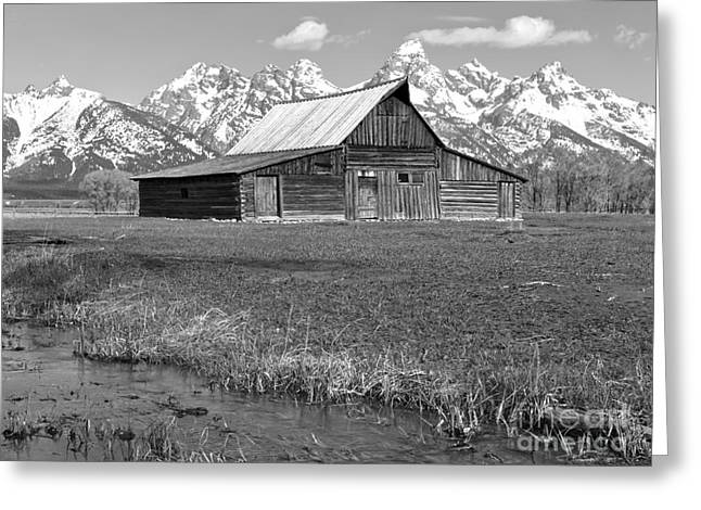 Streaming By The Moulton Barn Black And White Greeting Card by Adam Jewell