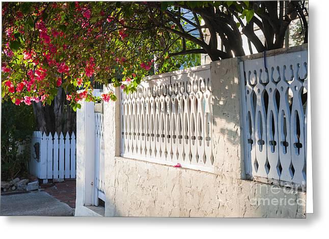 Street In Key West Greeting Card by Elena Elisseeva