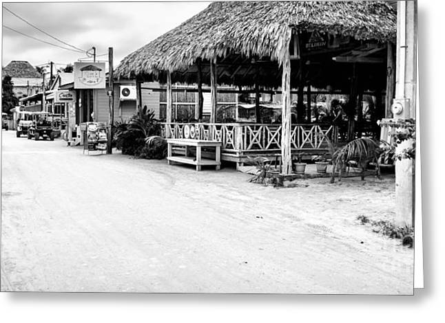 Street Scene On Caye Caulker Greeting Card by Lawrence Burry