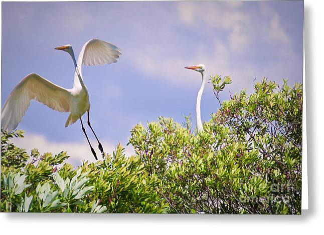 Strength In Numbers Greeting Card by Judy Kay