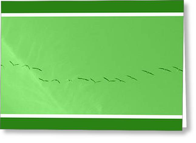 String Of Birds In Green Greeting Card