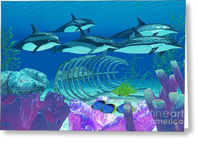 Striped Dolphin And Wreck Greeting Card by Corey Ford
