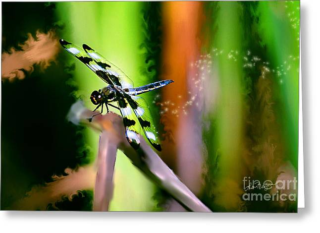 Striped Dragonfly Greeting Card