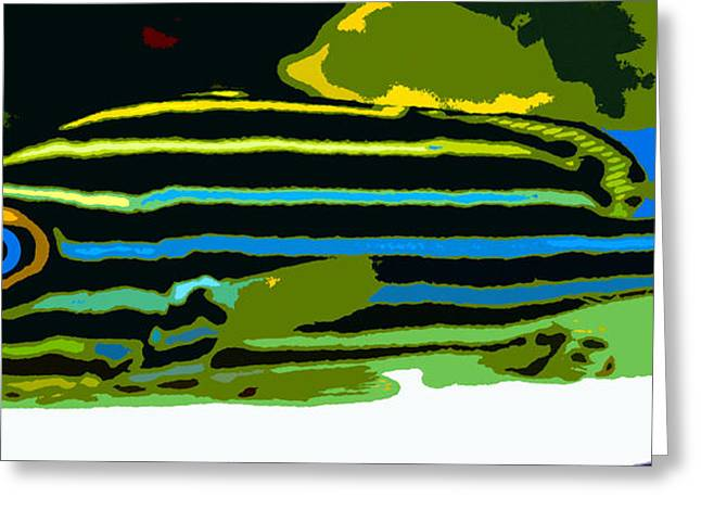 Stripped Fish Panoramic Greeting Card